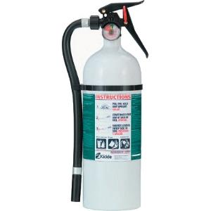 FIRE EXTINGUISHER WHT 2A10BC